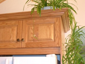 Kitchen cabinets - Detail